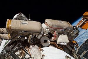 Expedition 40 Flight Engineers