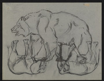 thumbnail image for Sketches of a bear and elephants
