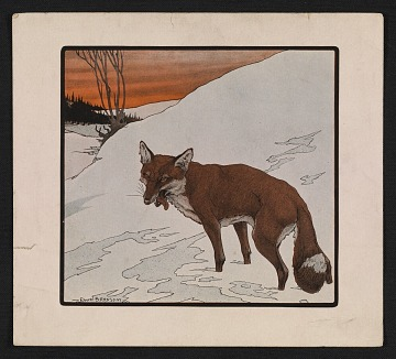 thumbnail image for Reproduction of a Paul Bransom drawing of a fox