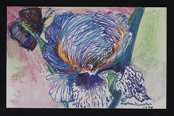 thumbnail image for Mail art drawing of a violet and butterfly