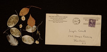 thumbnail image for Envelope containing leaves, flowers, and a feather collected by Joseph Cornell