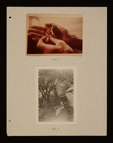 thumbnail image for Joseph Cornell: Sun in the Snow