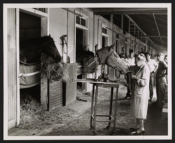 thumbnail image for Katherine Thayer Hobson working on Dr. Fager's head at Belmont Stakes