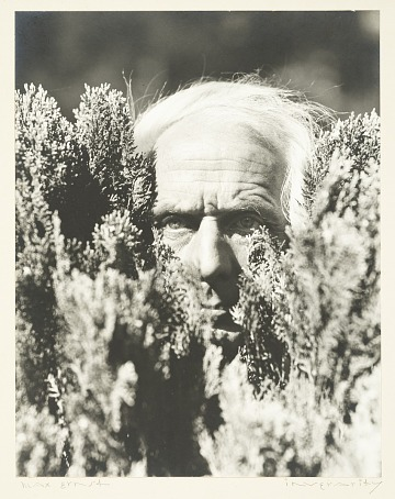 thumbnail image for Max Ernst