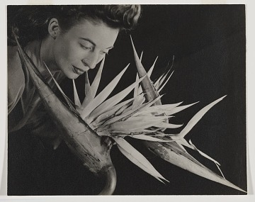 thumbnail image for Dorothy Liebes