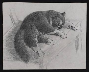 thumbnail image for Sketch of a cat