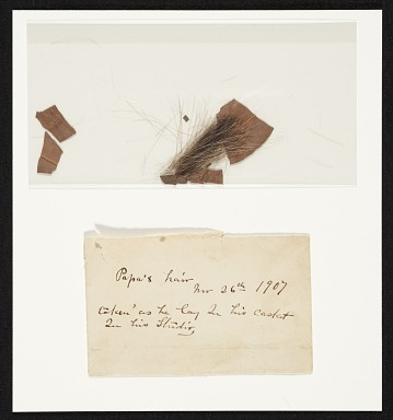 thumbnail image for Lock of John Frederick Peto's hair and a laurel leaf