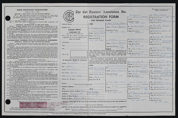 thumbnail image for Cat Fancier's Association registration form and pedigree blank