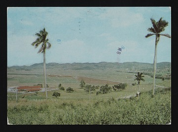 thumbnail image for Ana Mendieta postcard to Judith Wilson