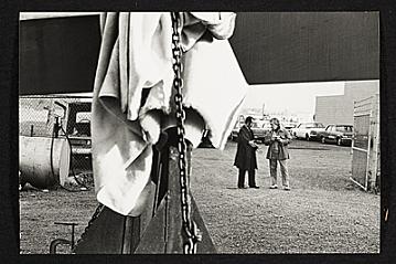 thumbnail image for Lippincott, Inc. photographs, 1968-1977 and undated