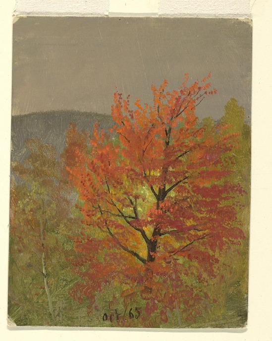 image for Autumn Landscape (Vermont)