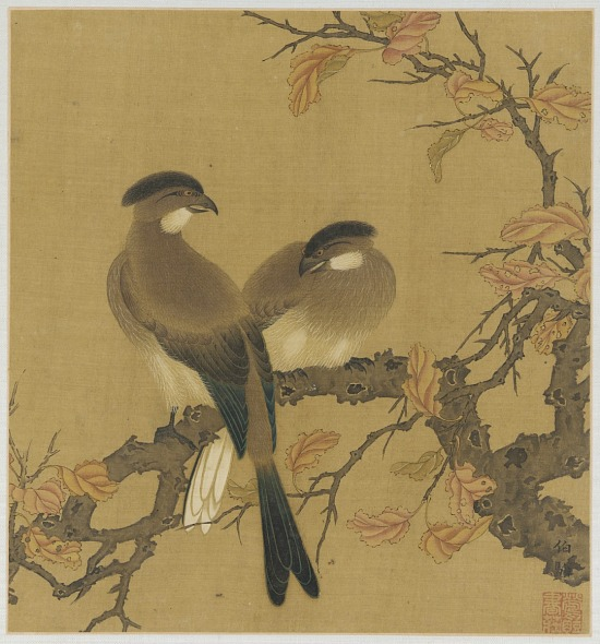 image for Two crested birds on a branch; autumn leaves