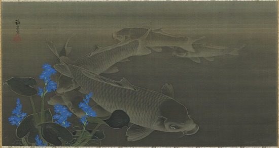 image for Carp