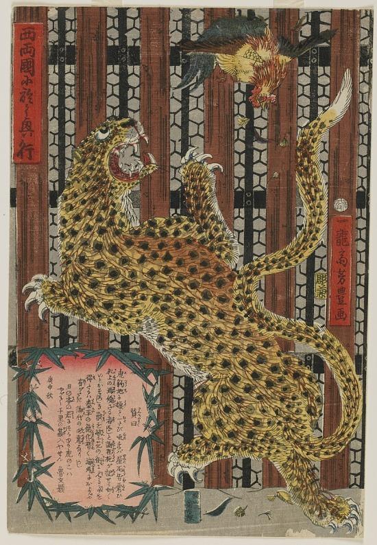 image for Display at Nishi Ryosku