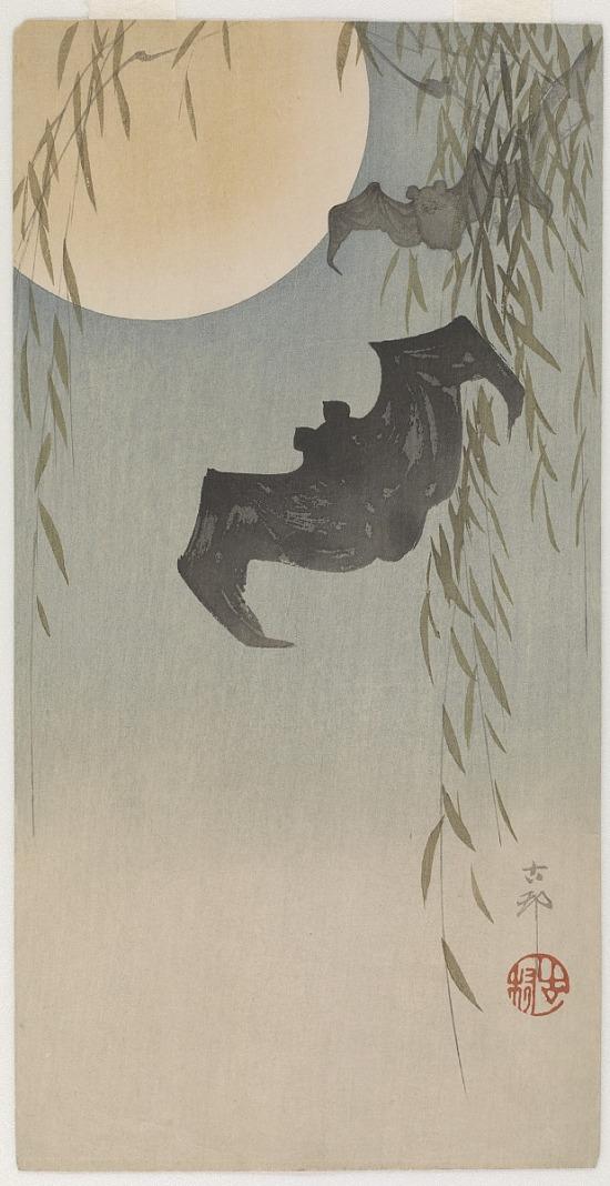 image for Bats in moonlight