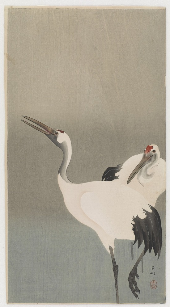 image for Cranes