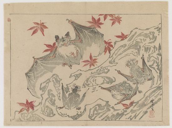 image for Bat