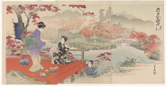 image for Autumn Leaves At Takinogawa