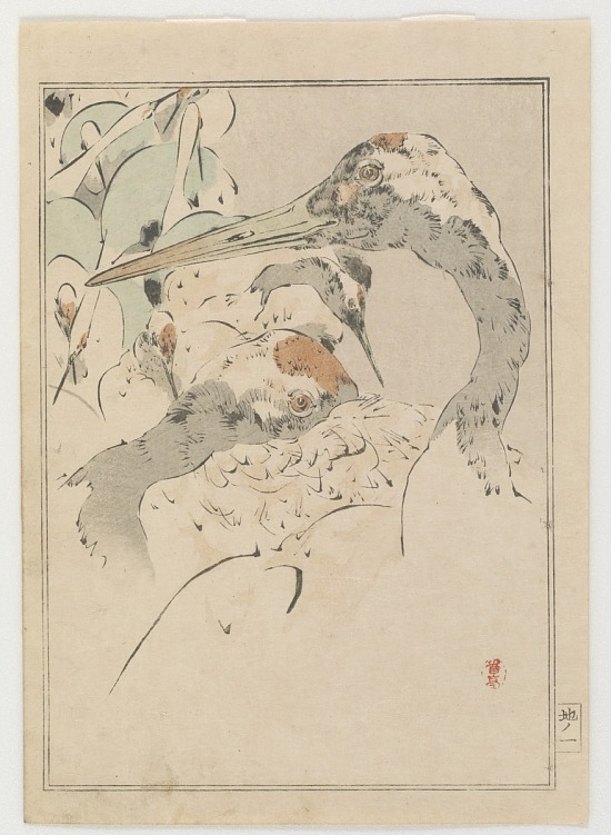 image for Hundred Cranes, from Seitei's Picture Album of Birds and Flowers Vol. 2