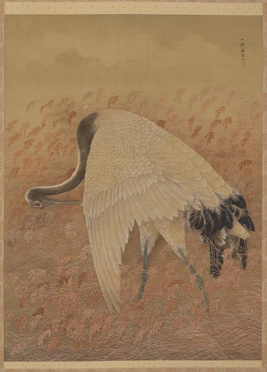 image for A Crane