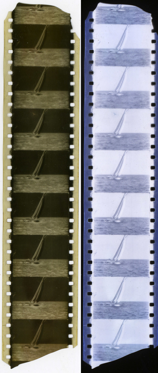 image for Strip of 35mm Film