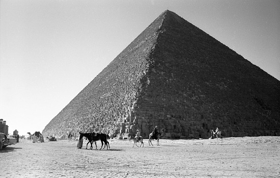 image for The pyramid of Khafre. Pyramids of Giza, Egypt, negative