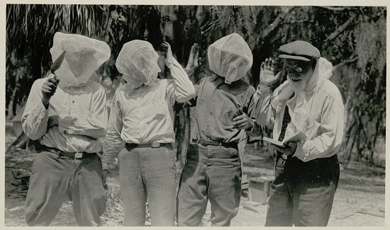 image for Non-Native Men, Including Jesse Walter Fewkes, Anthropologist, with Book, Trowel, and Mosquito Netting Over Heads 1923