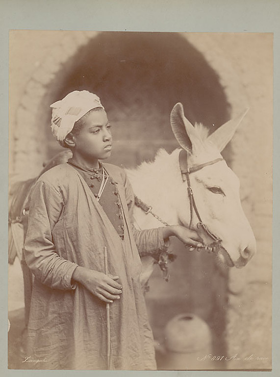 image for Boy in Costume with Donkey Outside Masonry Building 1892