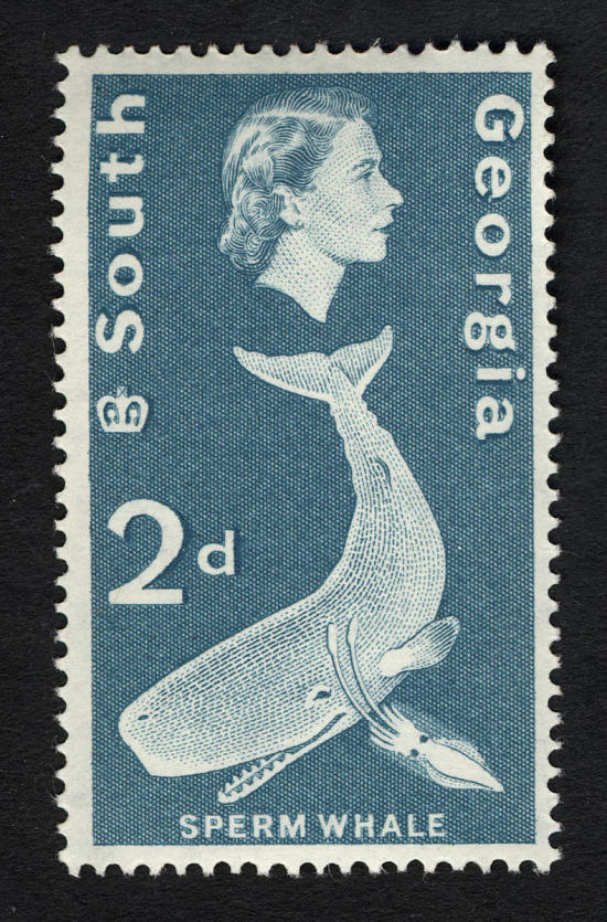 image for 2p Sperm Whale single