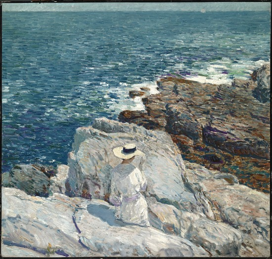 image for The South Ledges, Appledore