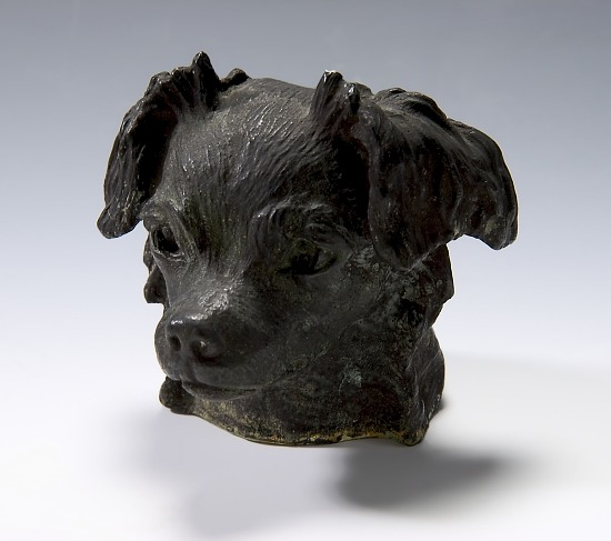 image for Head of Dog