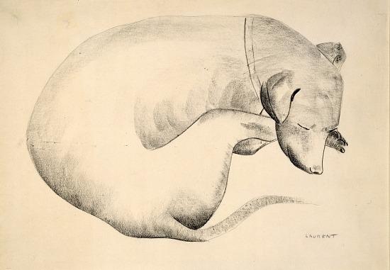 image for Sleeping Dog