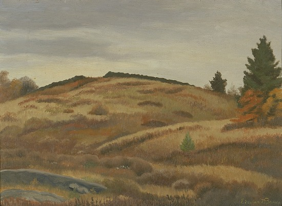 image for Autumn Fields