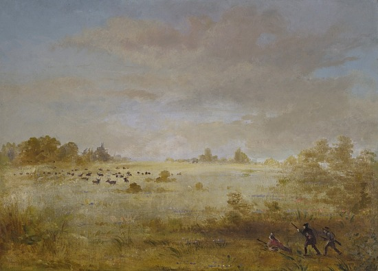 image for Elk Grazing on an Autumn Prairie