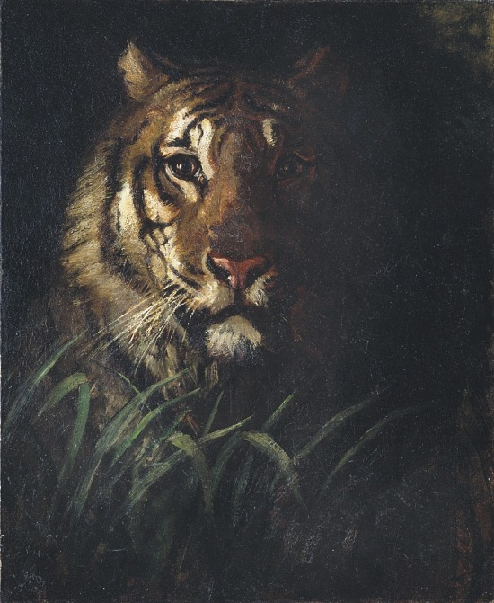 image for Tiger's Head