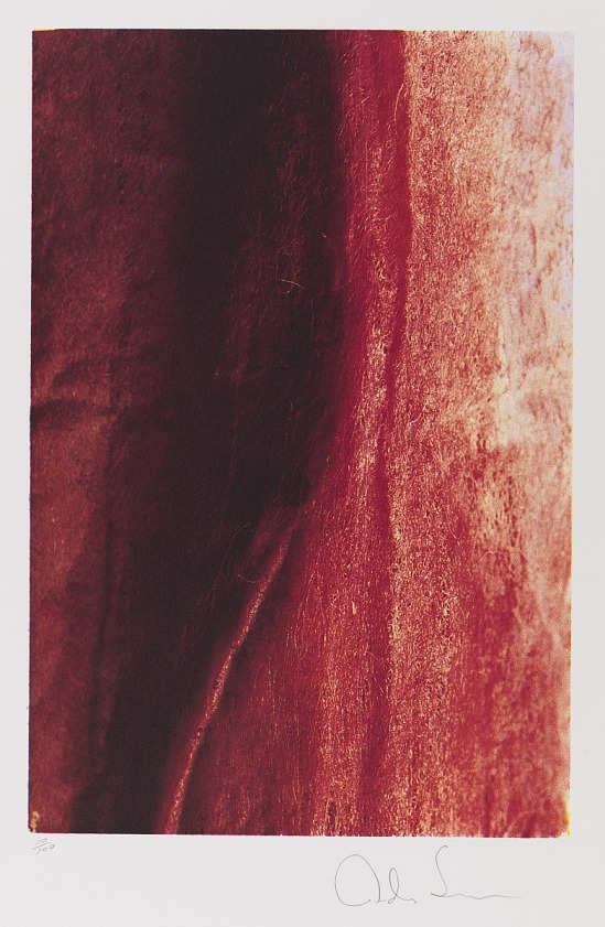 image for Red River #10, from the portfolio 10: Artist as Catalyst