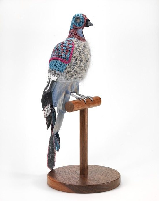 image for Biodiversity Reclamation Suit: Passenger Pigeon