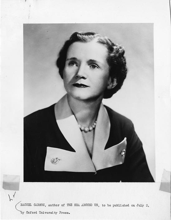image for Rachel Louise Carson (1907-1964)