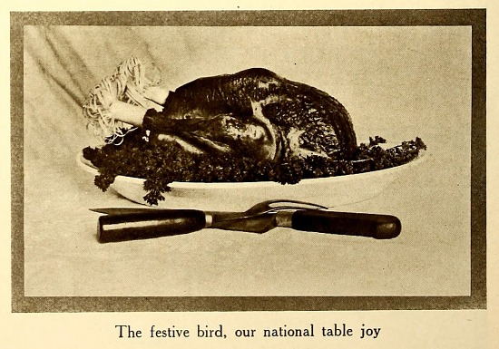 image for Roasted turkey from American homes and gardens.