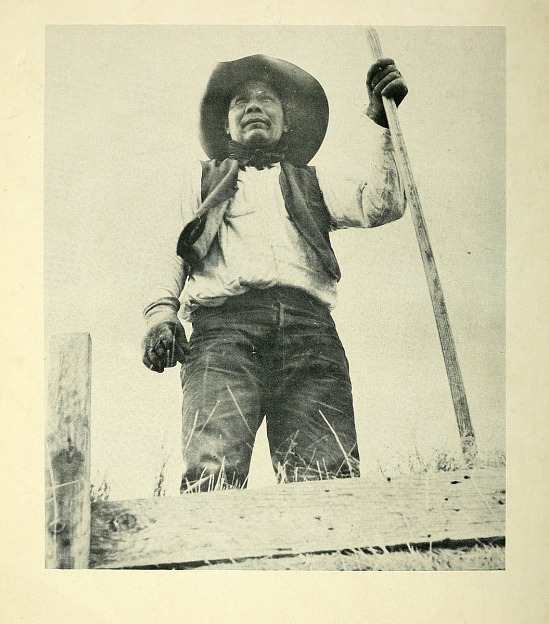 image for Native American from Indians at work.