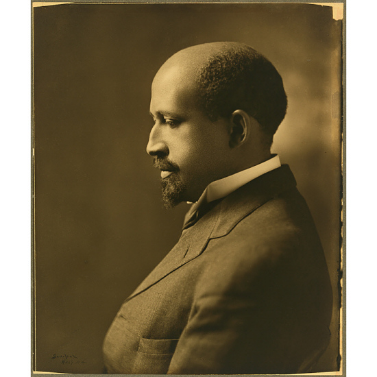 image for W. E. B. Du Bois