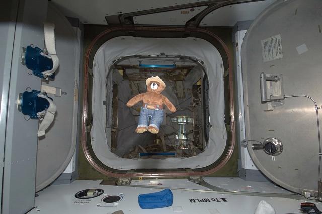 Smokey Bear Aboard the International Space Station
