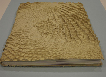 "Photo of Artist book: Estancias by Javier Pérez, 1997 published by Musées de Strasbourg, Strasbourg. Catalog of an exhibition held Oct. 18, 1997-Feb. 8, 1998. Book has rubber ""reptile skin"" cover; postcards in front pocket and booklet in back pocket of cover. Accompanying booklet includes interview with the artist."