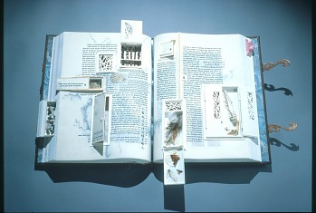 Photo of Artist book: Plinitude by M.L. Van Nice, 1994.