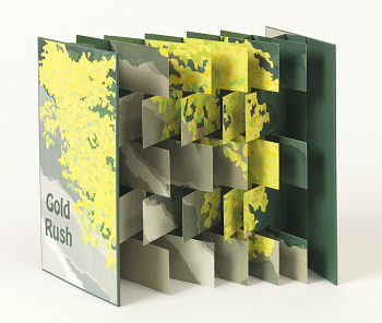 Photo of Artist book: Gold rush : a multi-page serigraph, by Jill Timm, 2013.