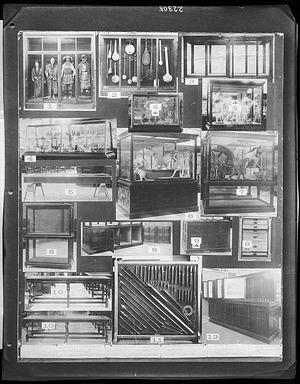 U.S. National Museum Exhibit Cases