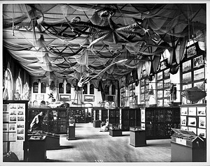 Fisheries Exhibit in the U.S. National Museum, 1886