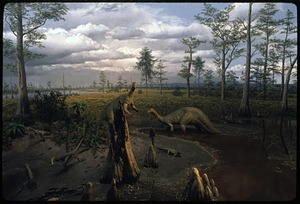 Triassic Diorama at National Museum of Natural History