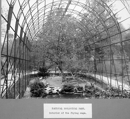 Flight Cage at National Zoo
