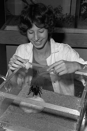 Nora Besansky Feeding the Tarantula